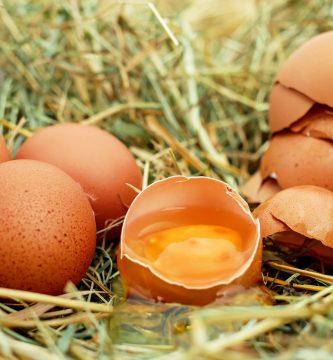 Significado de soñar con Huevos